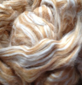 Naturally colored cotton sliver, ready to spin.