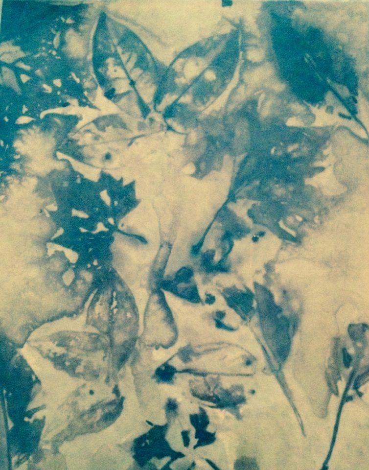 leaf prints on paper