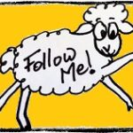 Sheep Follow Button