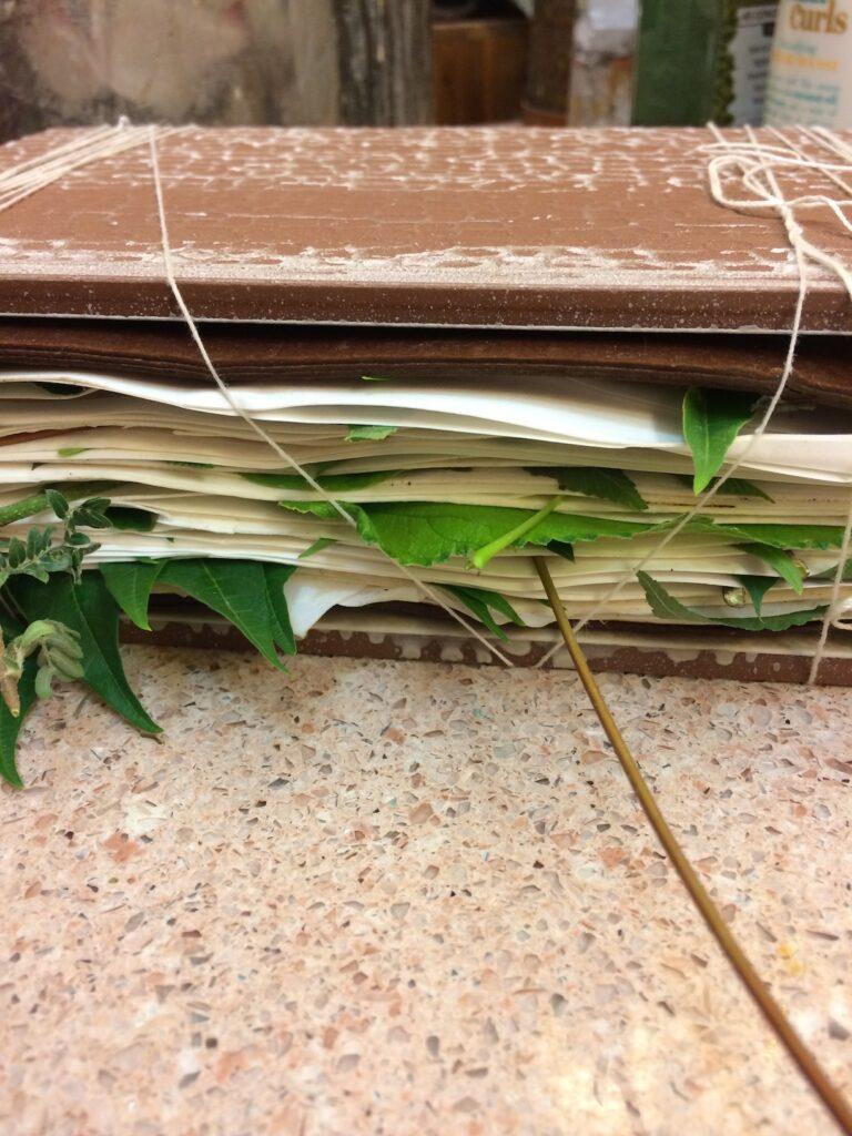 eco print paper bundle