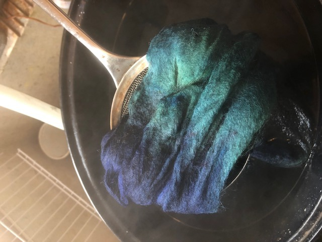 wet wool roving straight out of the dyebath